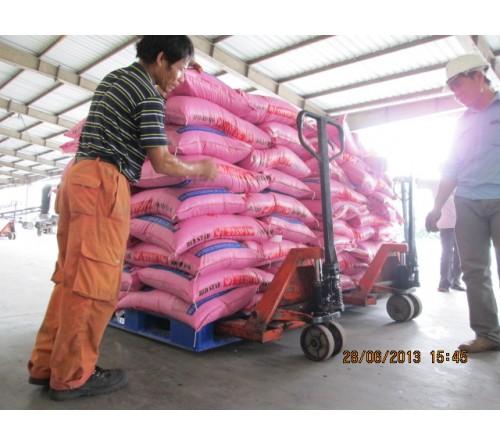 Xe Nâng Tay Thấp Noble 2 - 2.5 - 3 tấn