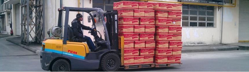 Thực phẩm Kinh Đô - Xe nâng xăng gas TCM 1.5 tấn