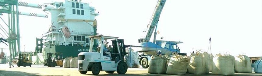 Xe nâng 5 tấn, xe nâng 10 tấn tại Cảng Hải Phòng